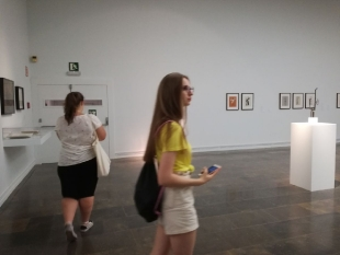 Instytut Sztuki Nowoczesnej